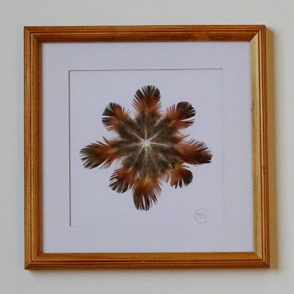 Flor del cáucaso nº1-1
